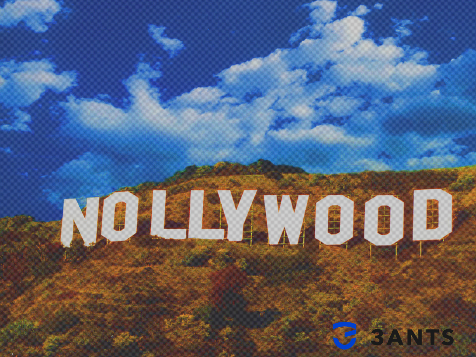 The Nigerian government has taken action to protect Nollywood from pirates